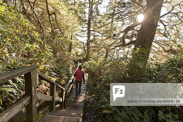 Tofino  British Columbia  British Columbia  Kanada  Vancouver Island