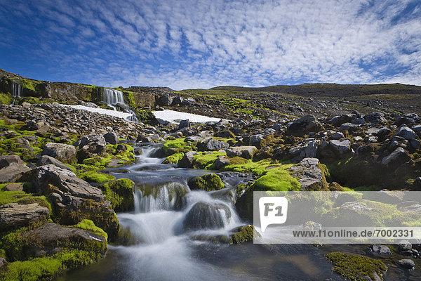Waterfall on Trekyllisheidi  Westfjords Region  Iceland