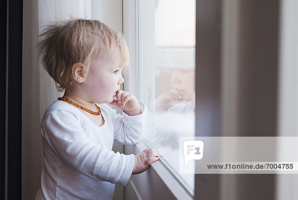 Portrait  Fenster  hinaussehen  Mädchen  Baby
