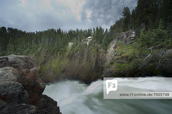 Vereinigte Staaten von Amerika  USA  Fluss  Yellowstone Nationalpark  Wyoming