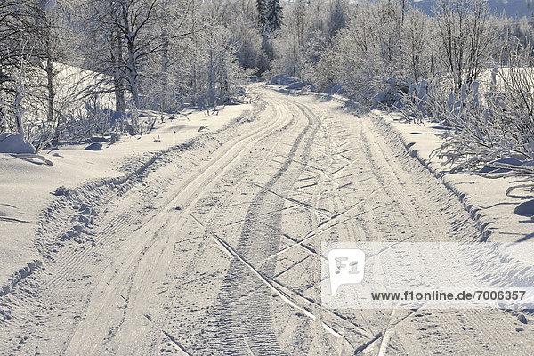 Road  Kuusamo  Northern Ostrobothnia  Oulu Province  Finland
