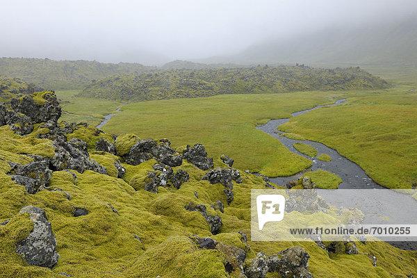 Snaefellsnes  Hellnar  Island