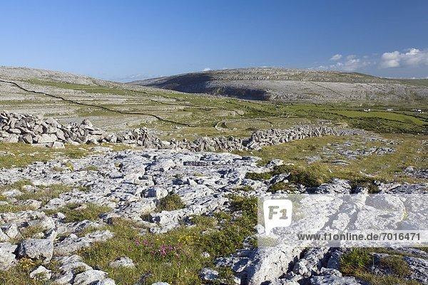 nahe  Landschaft  Clare County  Irland