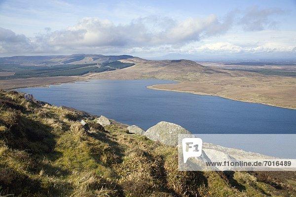 Berg  Ansicht  herzförmig  Herz  Ochse  Irland