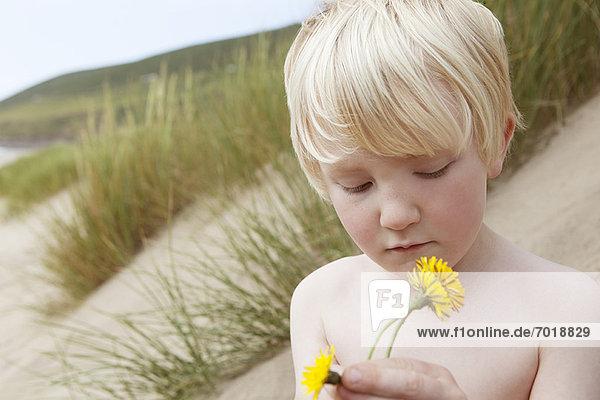 Junge mit Blumen auf Sanddüne Junge mit Blumen auf Sanddüne
