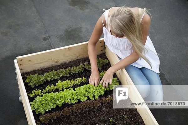 Teenagermädchen bei der Arbeit im Blumenkasten