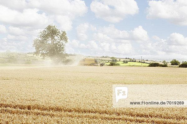 Pfade im Ackerbau geschnitzt