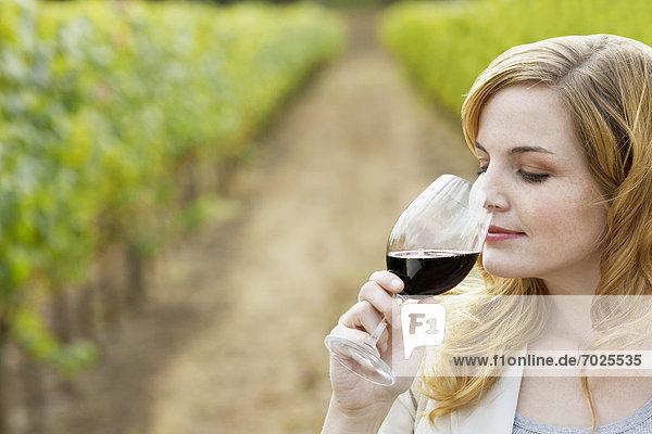 junge Frau junge Frauen stinken Rotwein riechen Weinberg junge Frau,junge Frauen,stinken,Rotwein,riechen,Weinberg