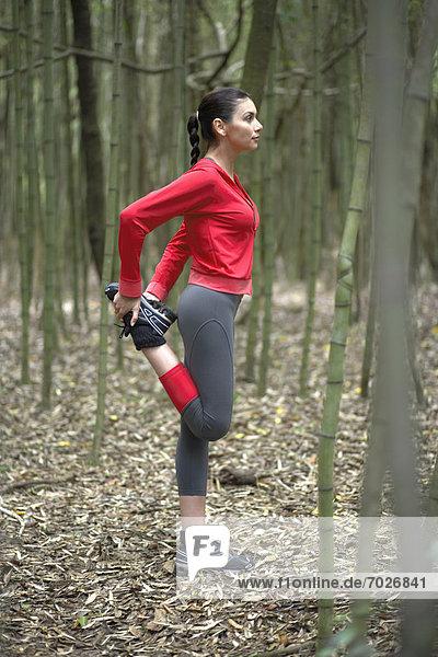 Menschlicher Oberschenkel  Frau  strecken  Wald  jung