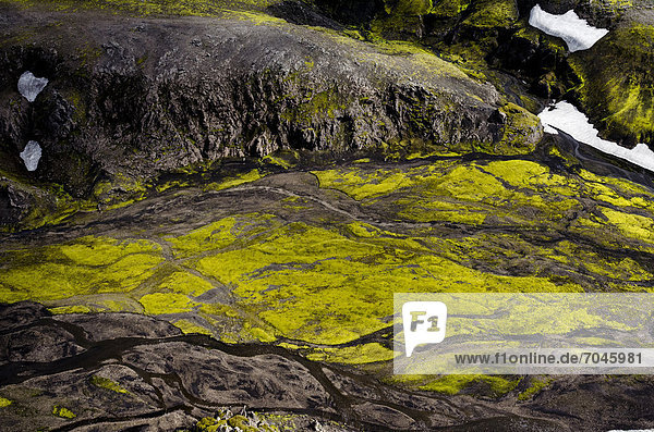 Aerial view  river  moss  Icelandic Highlands  Iceland  Europe