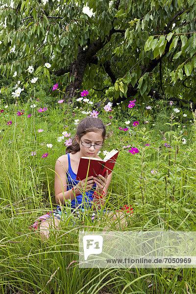 Mädchen  11 Jahre  liest ein Buch inmitten einer Blumenwiese in freier Natur