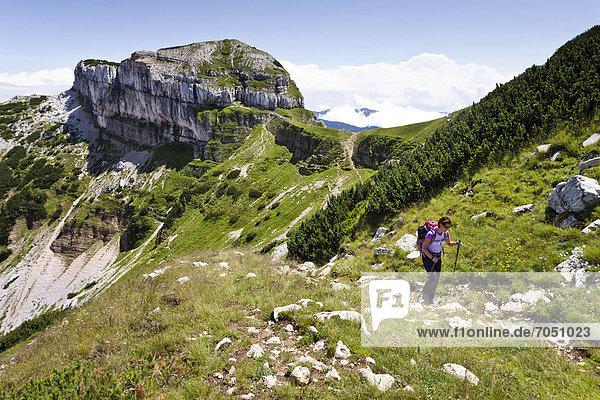 Wanderer beim Aufstieg auf die Tre Cime del Monte Bondone  hier Bergsteiger beim Aufstieg auf den Cornet  hinten der Dos d'Abramo  Trentino  Italien  Europa