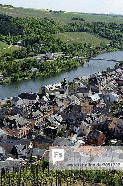 Luxemburg Hauptstadt nahe Europa Berg folgen Weinberg unterrichten Luxemburg
