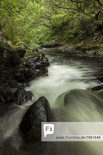 Mandatory Credit: Photo by Guy Aubertin / Rex Features (1856837e) River Lyn  Watersmeet  Devon Various travel - 2012