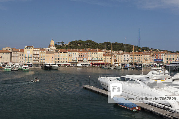 Port of Saint-Tropez  South of France  France  Europe