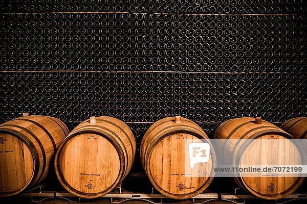 Winemaking in the largest wine region of Catalonia  the Penedes Barcelona  Spain Winemaking in the largest wine region of Catalonia, the Penedes Barcelona, Spain