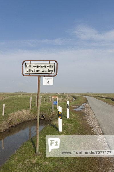 Einspurige Straße auf Hallig Langeness  Nordfriesland  Schleswig-Holstein  Norddeutschland  Deutschland  Europa