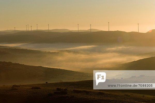 Sonnenaufgang Windpark