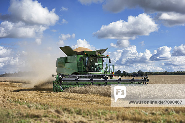 schneiden  aufwärts  Nutzpflanze  Maschine  Mähdrescher  groß  großes  großer  große  großen  Stroh  Staub  reif