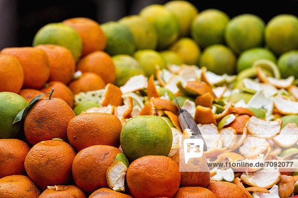 Indien  Uttarakhand  Orangen mit Verwandten