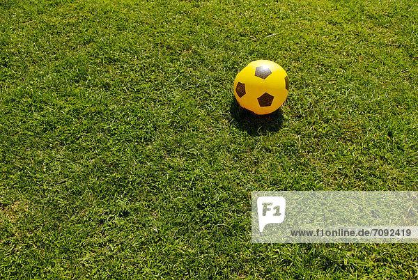 Italy  Soccer ball on grass