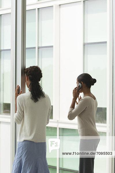 Büroangestellte am Fenster  eine Frau am Handy  Rückansicht