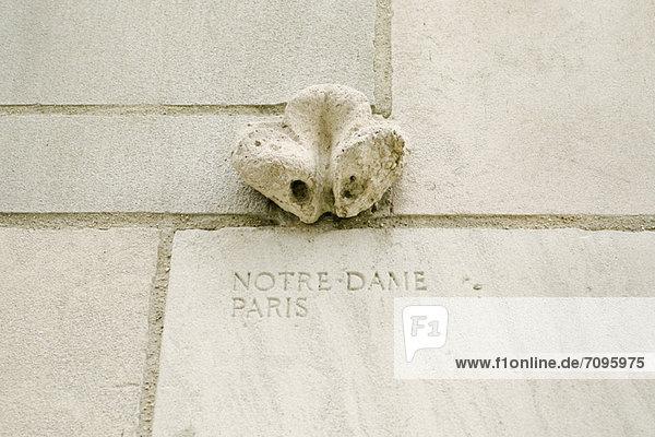 Schließen Sie vor der Chicago Tribune Stück der Kathedrale Notre Dame de Paris
