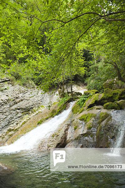 Waterfalls at edge of woods