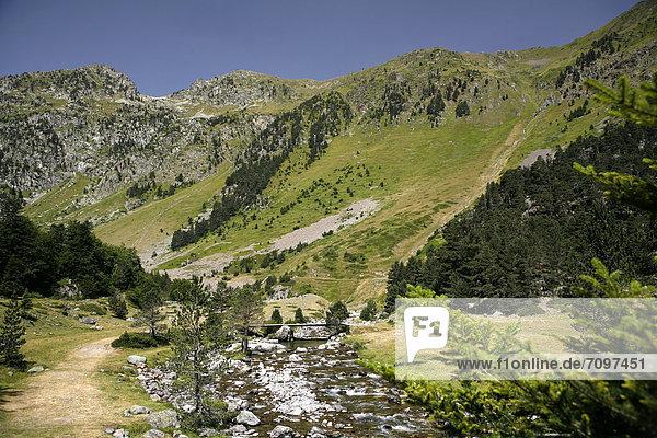 Landschaft in den Pyrenäen  französische Pyrenäen  Nationalpark bei ArgelËs-Gazost  Region Midi-PyrÈnÈes  DÈpartement Hautes-PyrÈnÈes  Frankreich  Europa