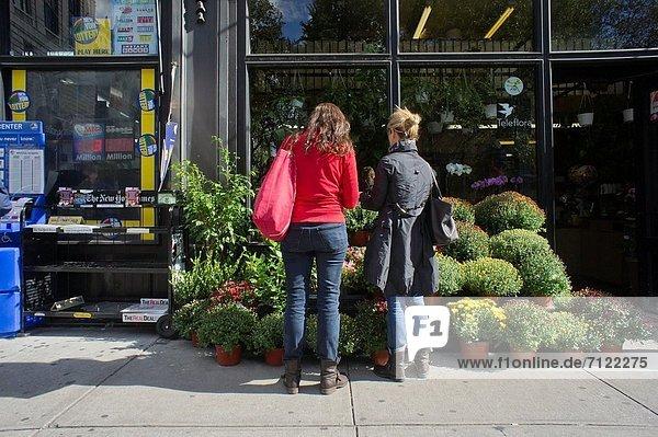 Frau  Blume  Nachbarschaft  Laden  Florist  neu