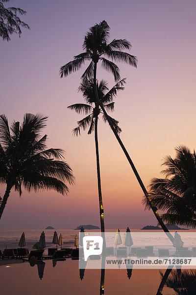 Palme  Urlaub  Strand  Sonnenuntergang  Reise  Meer  Sand  Insel  Asien  Klong Prao Beach  Palmenstrand  Paradies  Thailand  Tourismus