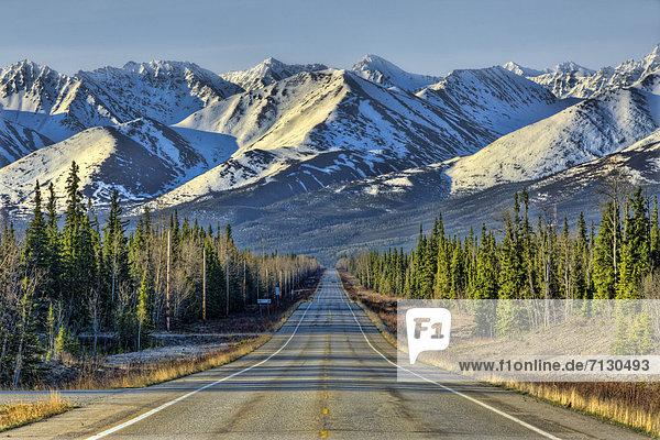 steese highway  Alaska  USA  United States  America