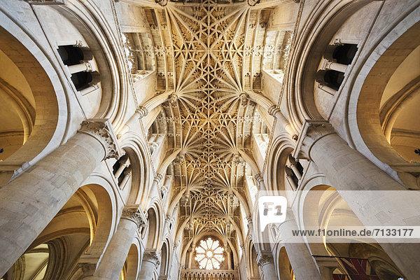 Europa  unterrichten  britisch  Großbritannien  Innenaufnahme  Kathedrale  Christentum  England  Oxford  Oxford University  Oxfordshire  Universität