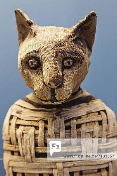Europa  britisch  Großbritannien  London  Hauptstadt  Innenaufnahme  Museum  Ägypten  British Museum  England  Mumie