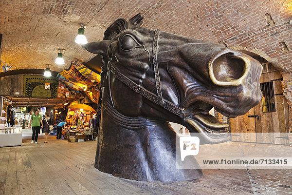 Pferdestall  Europa  britisch  Großbritannien  London  Hauptstadt  Camden  England