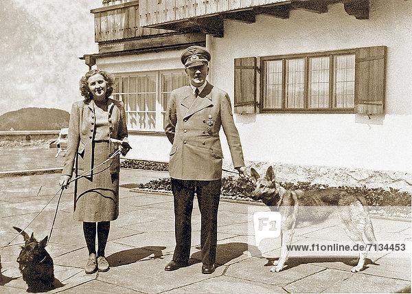 Hund  Berchtesgaden  deutsch  Deutschland  Schafhirte