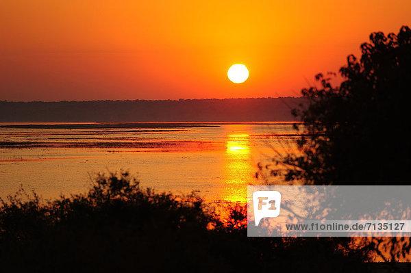 Nationalpark  Sonnenaufgang  Fluss  rot  Afrika  Botswana  Sonne
