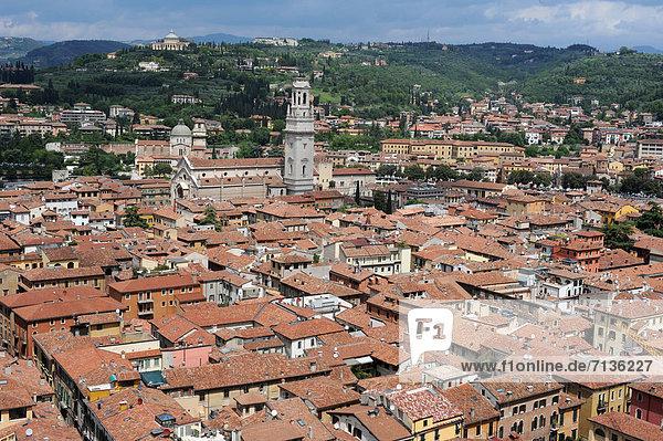 Dach  Kuppel  Europa  Kirche  Kathedrale  UNESCO-Welterbe  Venetien  Kuppelgewölbe  Italien  Verona