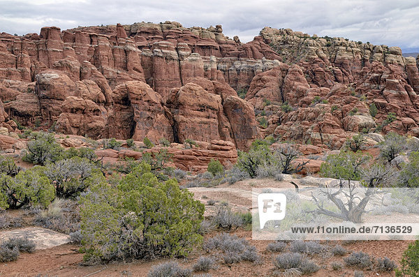 Fiery Furnace  Felsformation aus rotem Sandstein  Arches-Nationalpark  Moab  Utah  USA