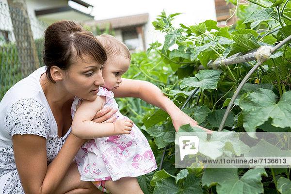 Garten jung Tochter Mutter - Mensch