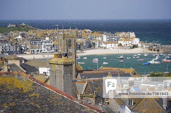 Dach  Hafen  Europa  bedecken  Stein  Großbritannien  über  Ansicht  Cornwall  England  Flechte   Flechten