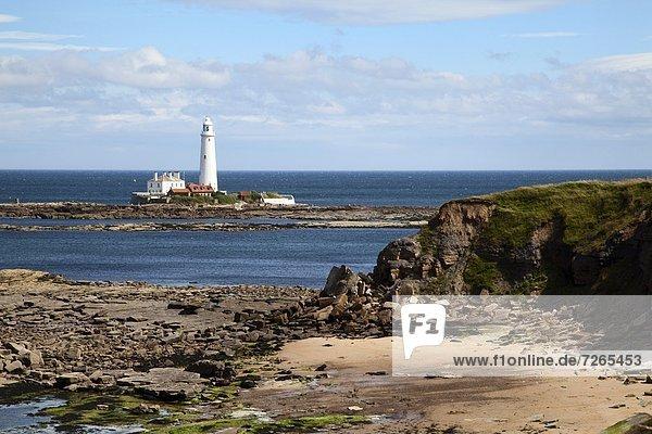 Europa  Großbritannien  England  Tyne and Wear  Whitley Bay
