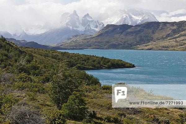 Blick auf die Granitberge Cuernos del Paine im Nationalpark Torres del Paine vom Ufer des Gletschersees Lago del Toro  Thyndal  Region Magallanes Antartica  Patagonien  Chile  Südamerika  Lateinamerika  Amerika