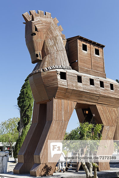 Replica of a Trojan horse at the entrance to the archaeological site of Troy  Truva  Canakkale  Marmara  Turkey  Asia