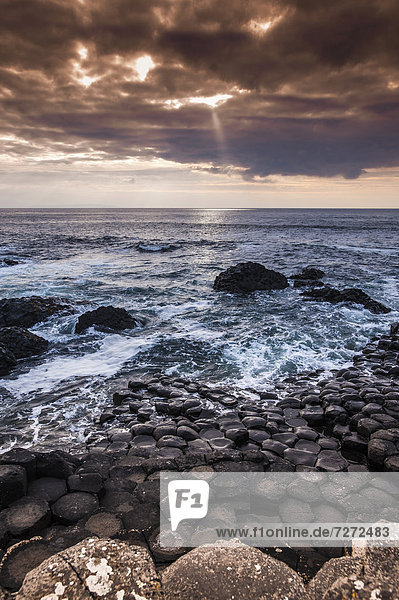 Basaltfelsen an der Atlantikküste  Giant's Causeway  Coleraine  Nordirland  Großbritannien  Europa