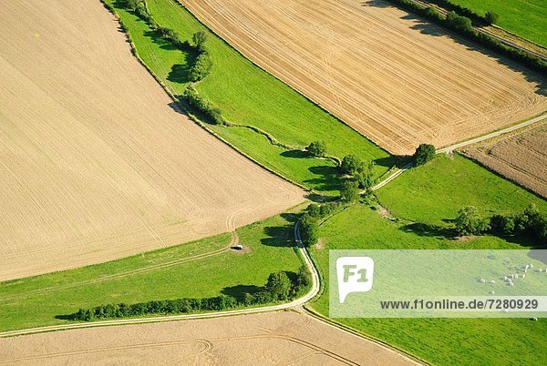 Agricultural landscape between villages of Rimling and Guising  Moselle  Lorraine  France