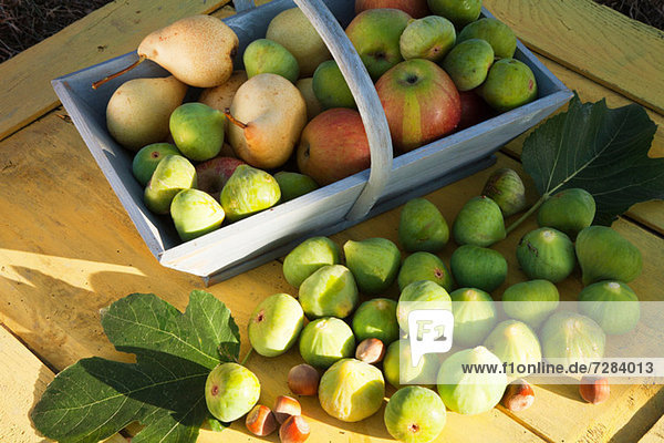 Korb mit frischen Äpfeln und Birnen