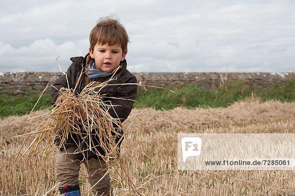 Junge spielt mit Stroh im Feld