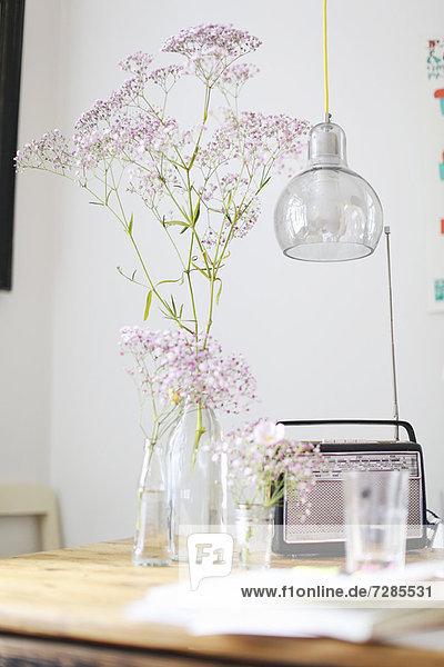 Blumen  Radio und Wasserglas auf dem Tisch Blumen, Radio und Wasserglas auf dem Tisch