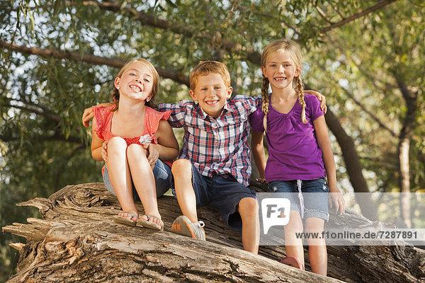 sitzend  Zusammenhalt  Baum  Ast  5-9 Jahre  5 bis 9 Jahre